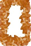 Frame das folhas Fotografia de Stock Royalty Free
