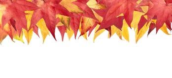 Frame das folhas de outono Fotografia de Stock