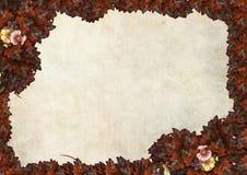 Frame das folhas de outono para uma mensagem Fotos de Stock