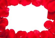Frame das pétalas de Rosa Foto de Stock Royalty Free