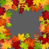 Frame dat uit kleurrijke de herfstbladeren wordt samengesteld Royalty-vrije Stock Foto