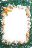 Frame dat uit overzeese shells en overzees zout wordt samengesteld Royalty-vrije Stock Foto's