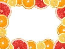 Frame dat van citroenen, sinaasappelen en grapefruits wordt gemaakt. stock afbeeldingen