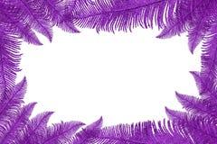 Frame dat van decoratieve bladeren wordt gemaakt royalty-vrije illustratie