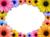 Frame dat van gekleurde bloemen wordt gemaakt vector illustratie