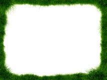 Frame dat van gras wordt gemaakt Royalty-vrije Stock Afbeeldingen