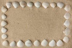 Frame dat van overzeese shells op het zand wordt gemaakt Stock Foto's