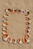 Frame dat van shells wordt gemaakt. Royalty-vrije Stock Foto's