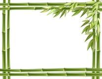 Frame de bambu. Fundo do vetor Fotos de Stock Royalty Free