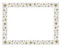 Frame de Camomiles Fotografia de Stock Royalty Free
