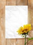 Frame de papel Foto de Stock