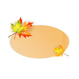 Frame  decorated with autumn maple leaves Stock Photography