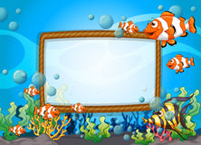 Frame design with fish underwater. Illustration Stock Photo