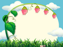 Frame design with flower in the field. Illustration Royalty Free Stock Photos