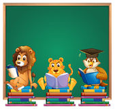 Frame design with lion and tiger reading books. Illustration Royalty Free Stock Images
