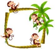 Frame design with monkeys on coconut tree. Illustration Stock Image