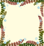 Frame design with seaweeds and bubbles. Illustration Royalty Free Stock Images