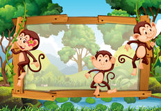Frame design with three monkeys in the woods. Illustration Royalty Free Stock Photography