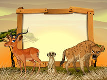 Frame design with wild animals in the field Stock Images