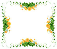 Frame design with yellow flowers Royalty Free Stock Photo