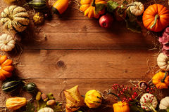 Frame of different squash gourds with copy space Stock Photos