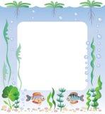 Frame do aquário Imagem de Stock Royalty Free
