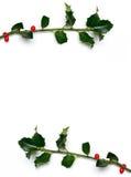 Frame do azevinho do Natal Imagens de Stock Royalty Free