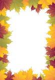 Frame do bordo Imagem de Stock Royalty Free