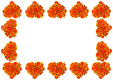 Frame do coração da flor Imagens de Stock Royalty Free