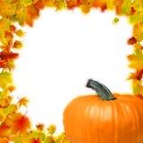 Frame do feriado de acção de graças. EPS 8 Imagens de Stock