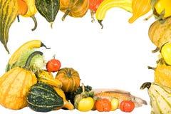 Frame do Gourd e da polpa Fotografia de Stock