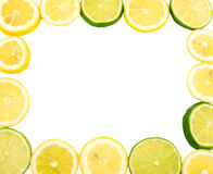 Frame do limão Fotos de Stock