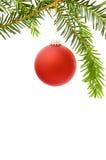 Frame do Natal com bauble vermelho Imagem de Stock