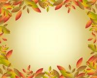Frame do outono ilustração royalty free