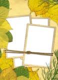 Frame do outono Imagens de Stock