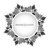 Frame do outono Fundo do vetor Ilustração do vetor Teste padrão floral do vetor Projeto gráfico da forma Conceito da beleza Cores Fotos de Stock Royalty Free