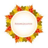 Frame do outono Fundo do vetor Ilustração do vetor Teste padrão floral do vetor Projeto gráfico da forma Conceito da beleza Cores Fotos de Stock