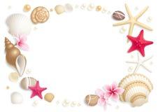Frame do Seashell Fotos de Stock Royalty Free