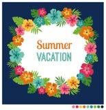Frame do verão Foto de Stock