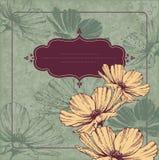 Frame do vintage com cameos de florescência ilustração royalty free