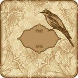 Frame do vintage com lírios e os pássaros de florescência, mão Imagens de Stock