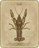 Frame do vintage com lagostas, desenho da mão ilustração stock