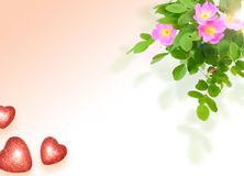 Frame  with a dog-roses and of hearts Royalty Free Stock Image
