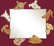 Frame with dogs Stock Images