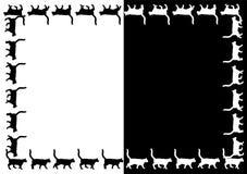 Frame dos gatos do vetor. ilustração royalty free
