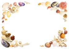 Frame dos Seashells Foto de Stock