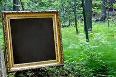 Frame dourado em branco na natureza Imagem de Stock Royalty Free
