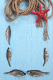 Frame of dried fish, starfish and twisted rope Stock Photos