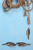 Frame from dried fish and twisted rope Royalty Free Stock Photos