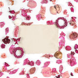 Frame with  dried flowers old paper  isolated on white backgroun. Frame with sea shells, dried flowers, twigs, leaves, petals  and old paper isolated on white Royalty Free Stock Photography